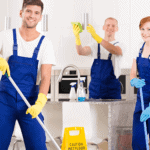 PROFESSIONAL CLEANING SERVICE IN The Greater Montreal Area